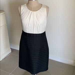 ANN TAYLOR LOFT CREAM BLACK DRESS CAREER GU SZ 8